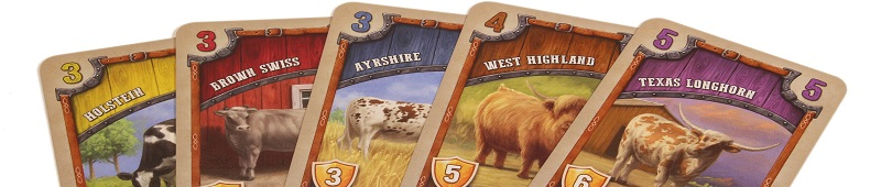 closeup of five game cards, each depicting a different breed of cow, including Texas Longhorn, West Highland, Ayrshire, Brown Swiss, and Holstein